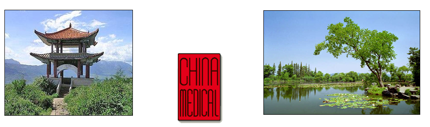 China Medical GmbH
